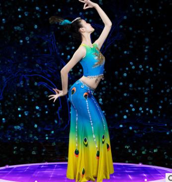 会员价91元傣族舞蹈服成人女孔雀舞表演服装民族舞蹈演出服大摆裙练功练习裙